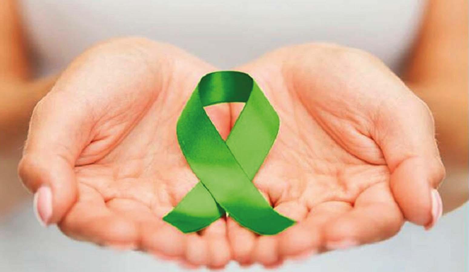 4 - doação de orgaos